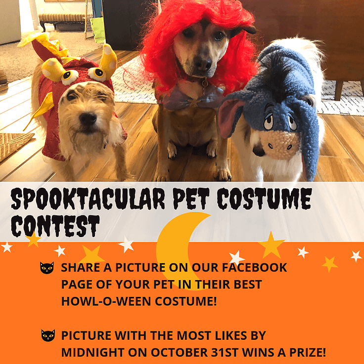 Spooktacular Pet Costume Contest. Share a picture on our facebook page of your pet in their best howl-o-ween costume! Picture with the most likes by midnight on october 31st wins a prize!