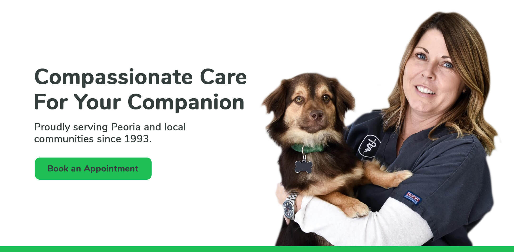Compassionate care for your companion. Proudlly serving Bloomington-Normal, Illinois families since 1993.